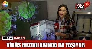 Koronavirüs Buzdolabında Hatta Buzlukta da Yaşıyor